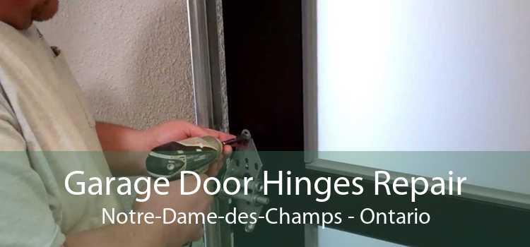 Garage Door Hinges Repair Notre-Dame-des-Champs - Ontario