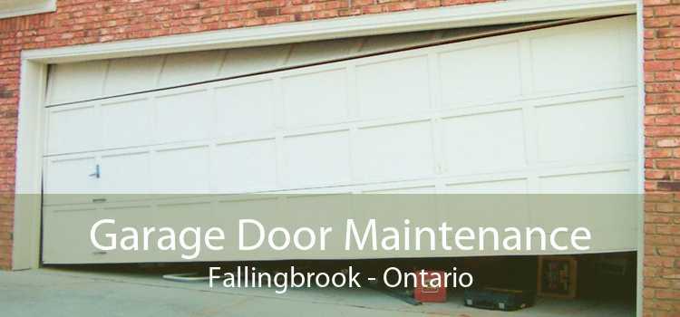 Garage Door Maintenance Fallingbrook - Ontario