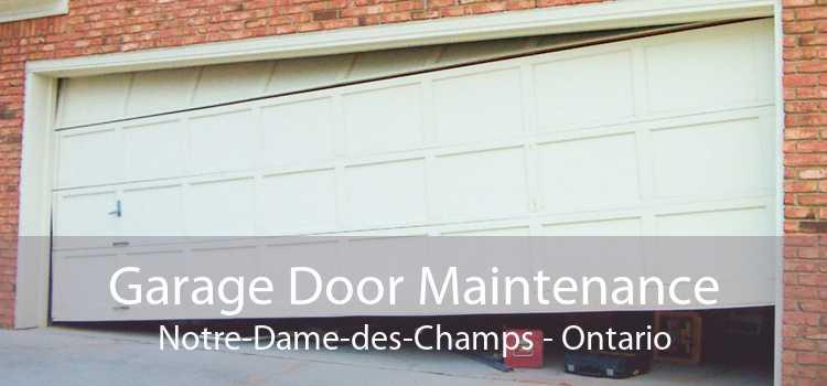 Garage Door Maintenance Notre-Dame-des-Champs - Ontario