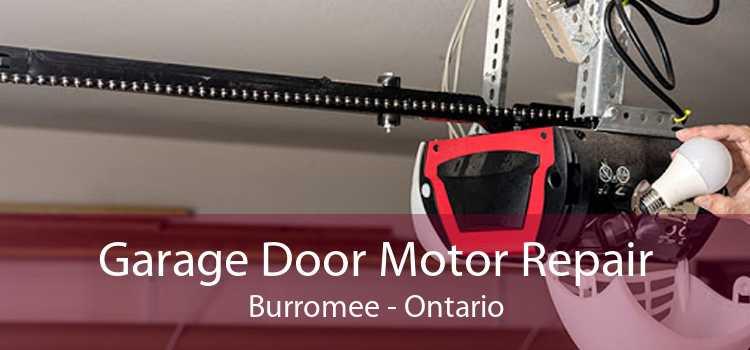 Garage Door Motor Repair Burromee - Ontario