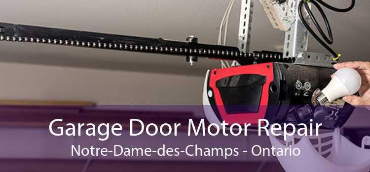 Garage Door Motor Repair Notre-Dame-des-Champs - Ontario