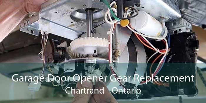 Garage Door Opener Gear Replacement Chartrand - Ontario