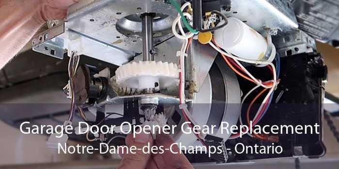 Garage Door Opener Gear Replacement Notre-Dame-des-Champs - Ontario