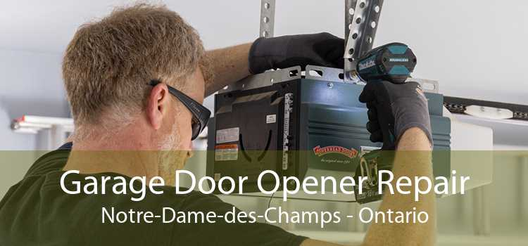 Garage Door Opener Repair Notre-Dame-des-Champs - Ontario