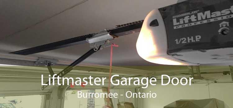 Liftmaster Garage Door Burromee - Ontario