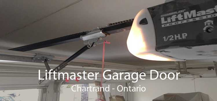 Liftmaster Garage Door Chartrand - Ontario